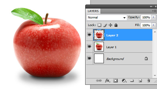 Copy to a New Layer