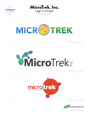 Logo Concepts for MicroTrek