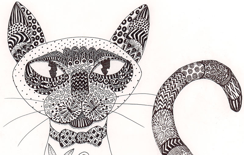 siamese cat drawing by dawn pedersen 2015