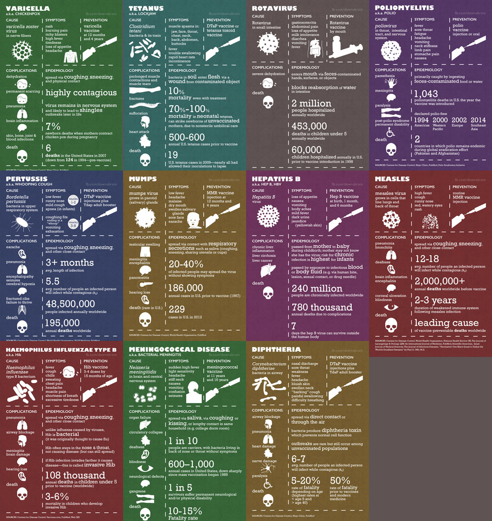 social media promotion image: all the infographics together