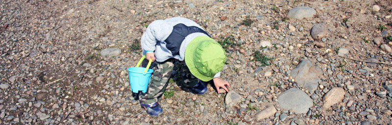 Theo collects rocks