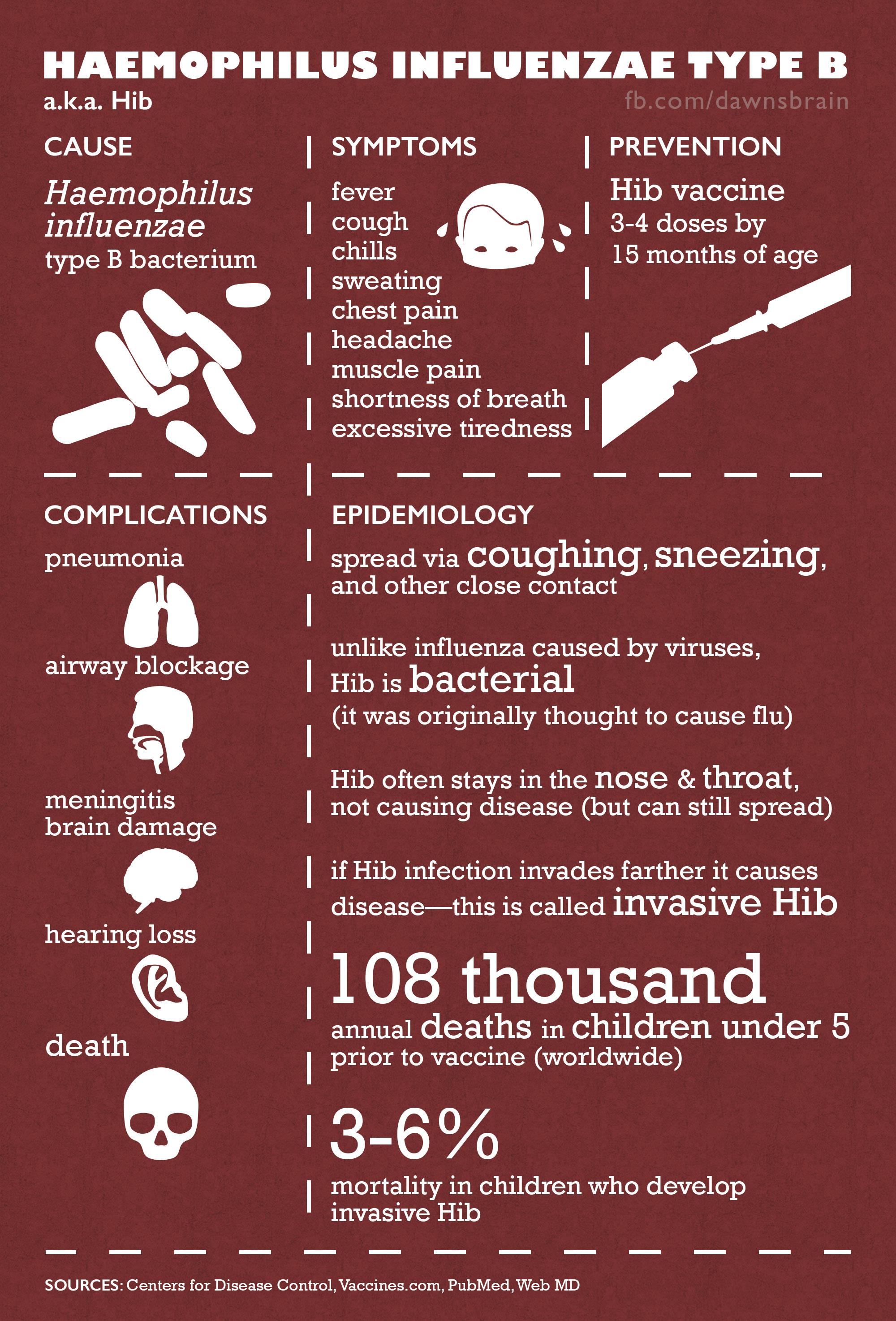 Haemophilus influenzae type B (Hib) Infographic